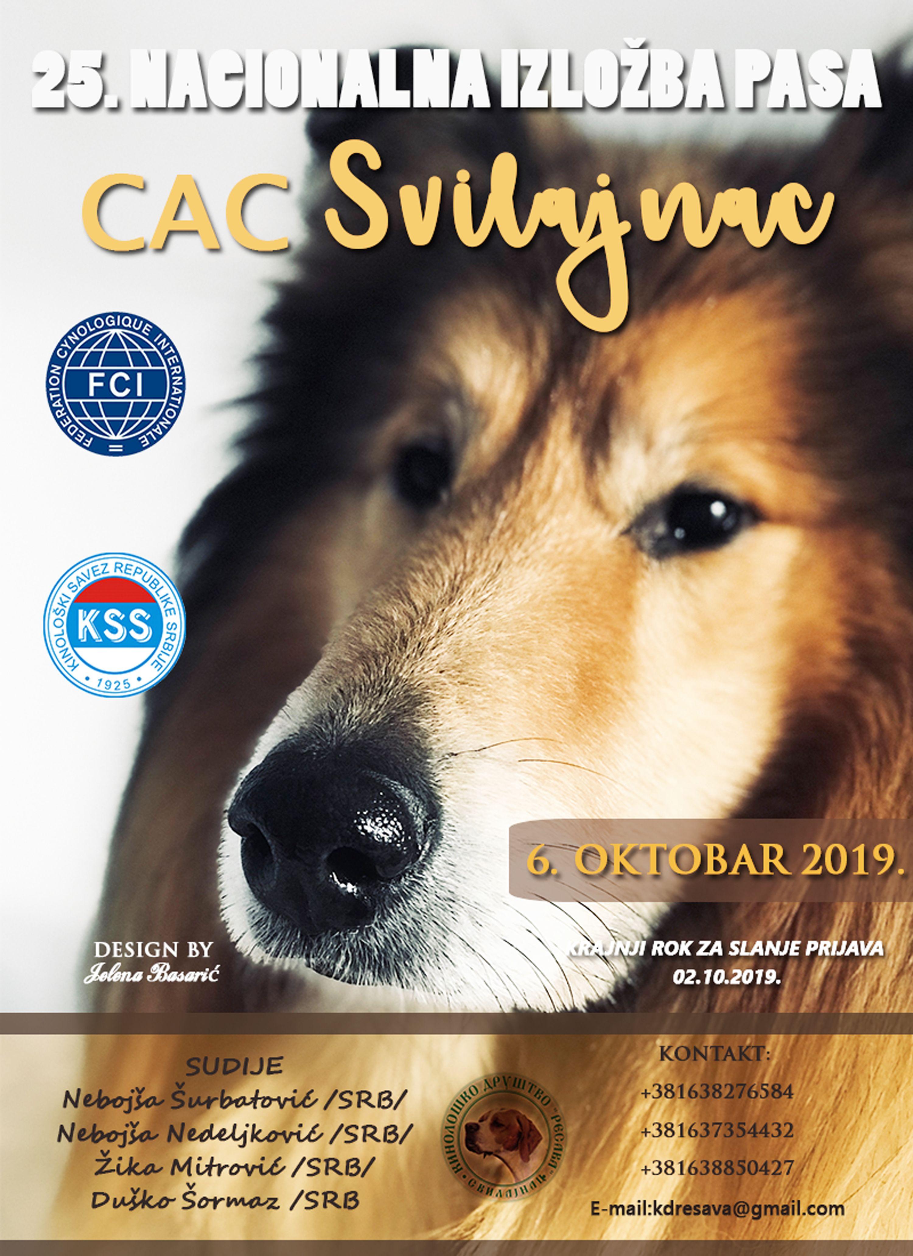 Info Www Jelenadogshows Com Dog Shows Dog Show Dogs
