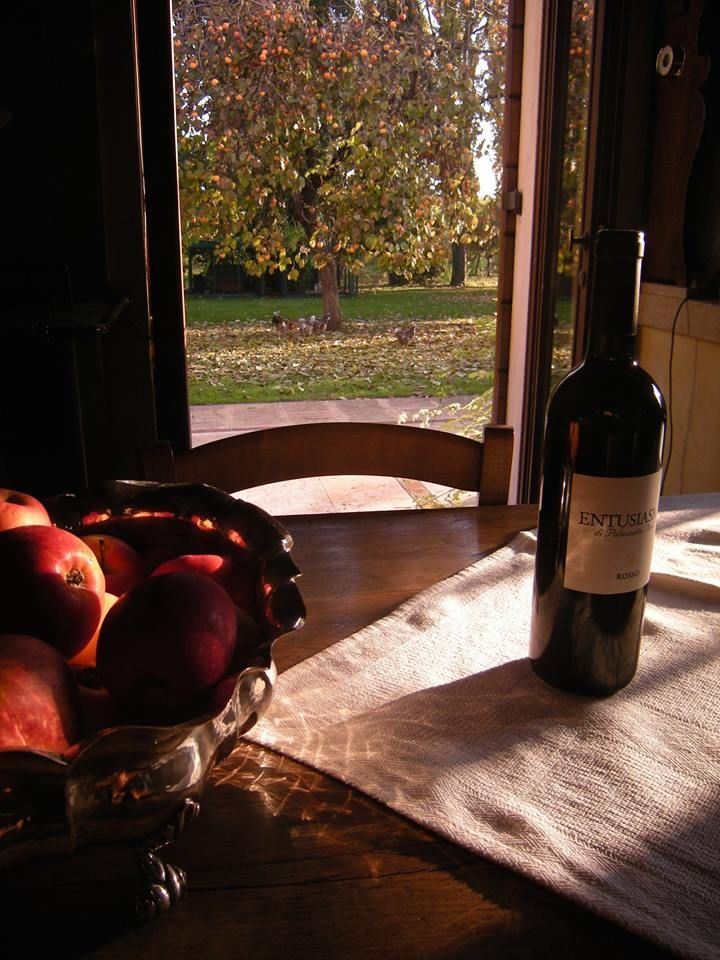 Palazzetto Ardi, Veneto. Autumn view from the kitchen window http://www.organicholidays.com/at/2673.htm