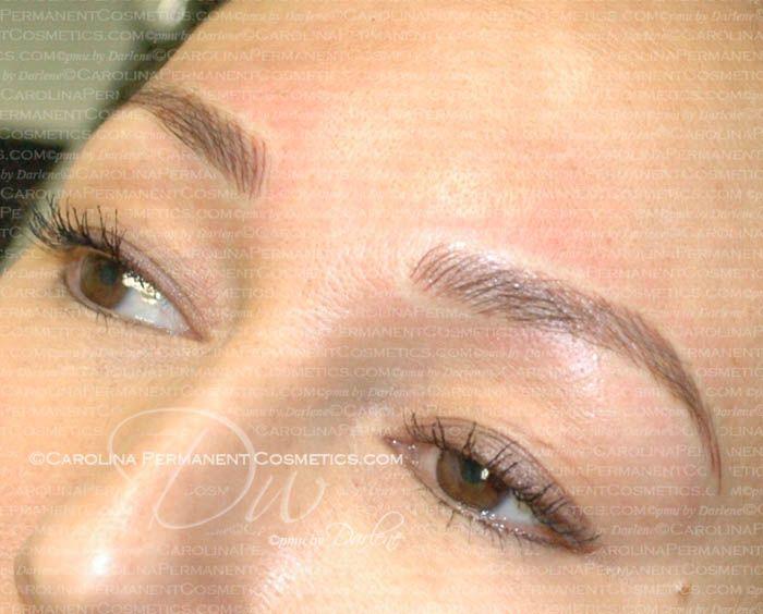 704 796 8221 Concord Nc Beautiful Permanent Eyebrows Tattoo
