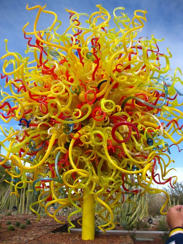 Scottsdale Arizona Botanical Gardens Dale Chihuly Exhibit Scottsdale Local Artists And