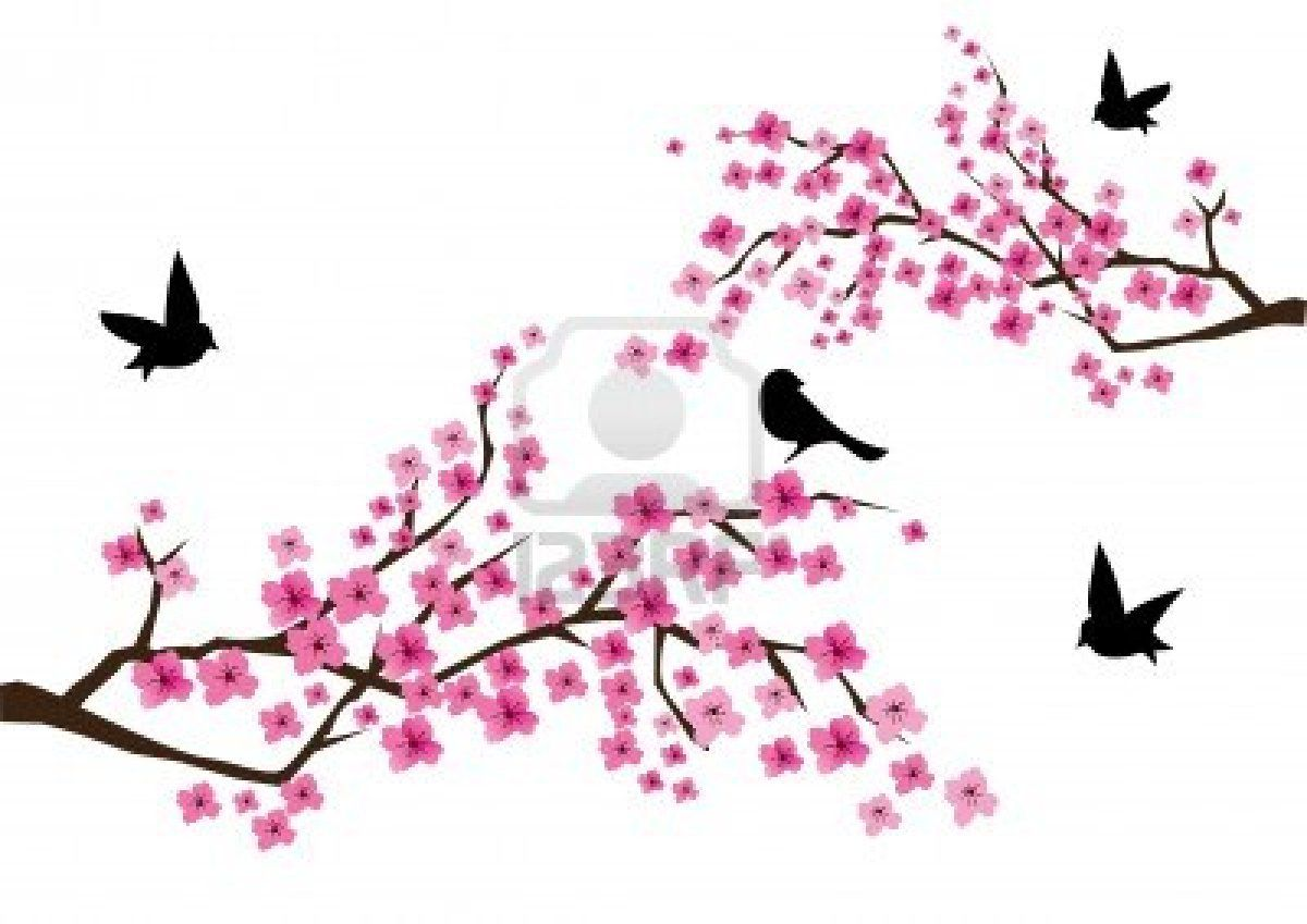 Vector Cherry Blossom With Birds Cherry Blossom Cherry Blossom Tattoo Cherry Blossoms Illustration