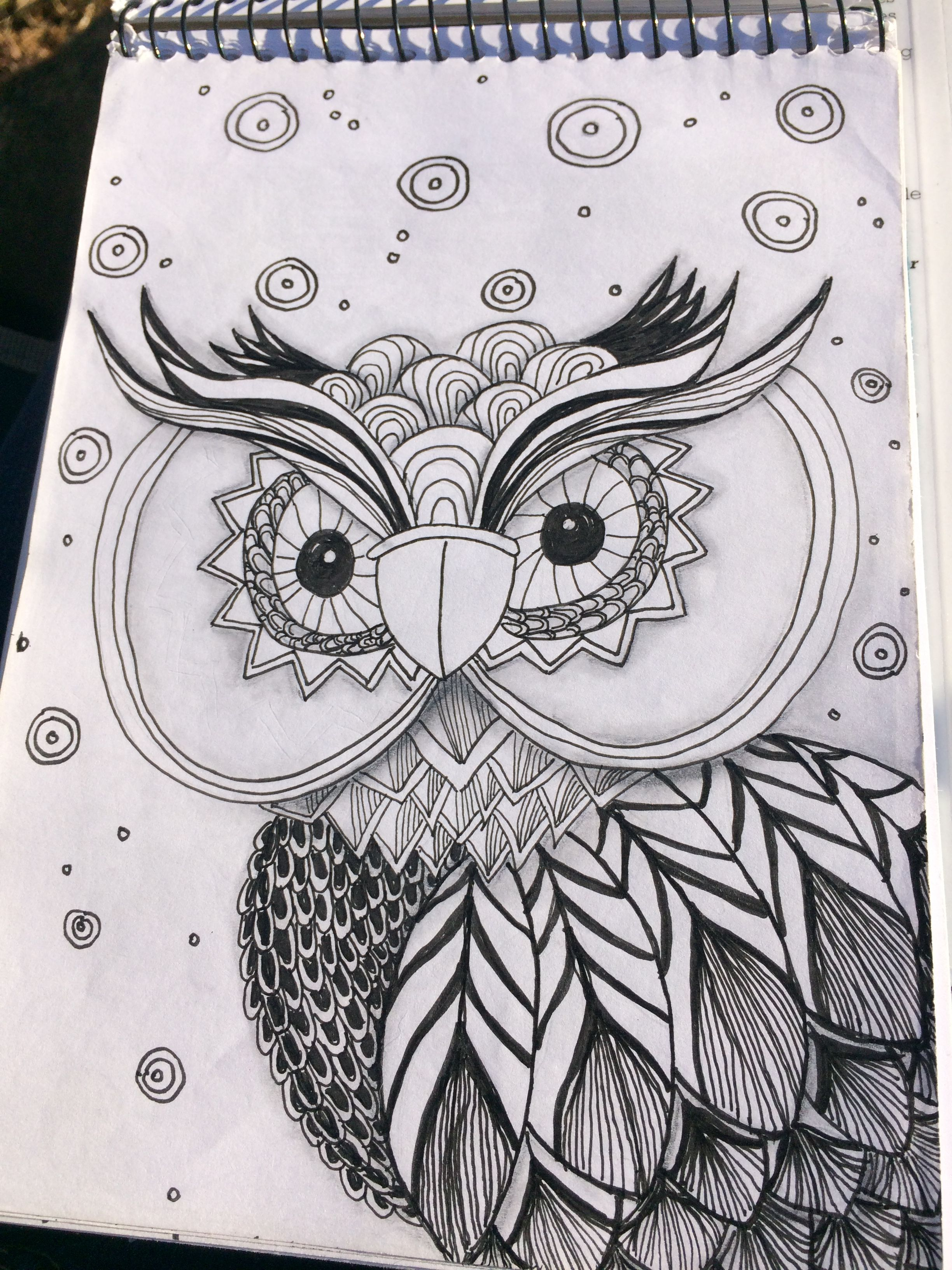 What's up owl?
