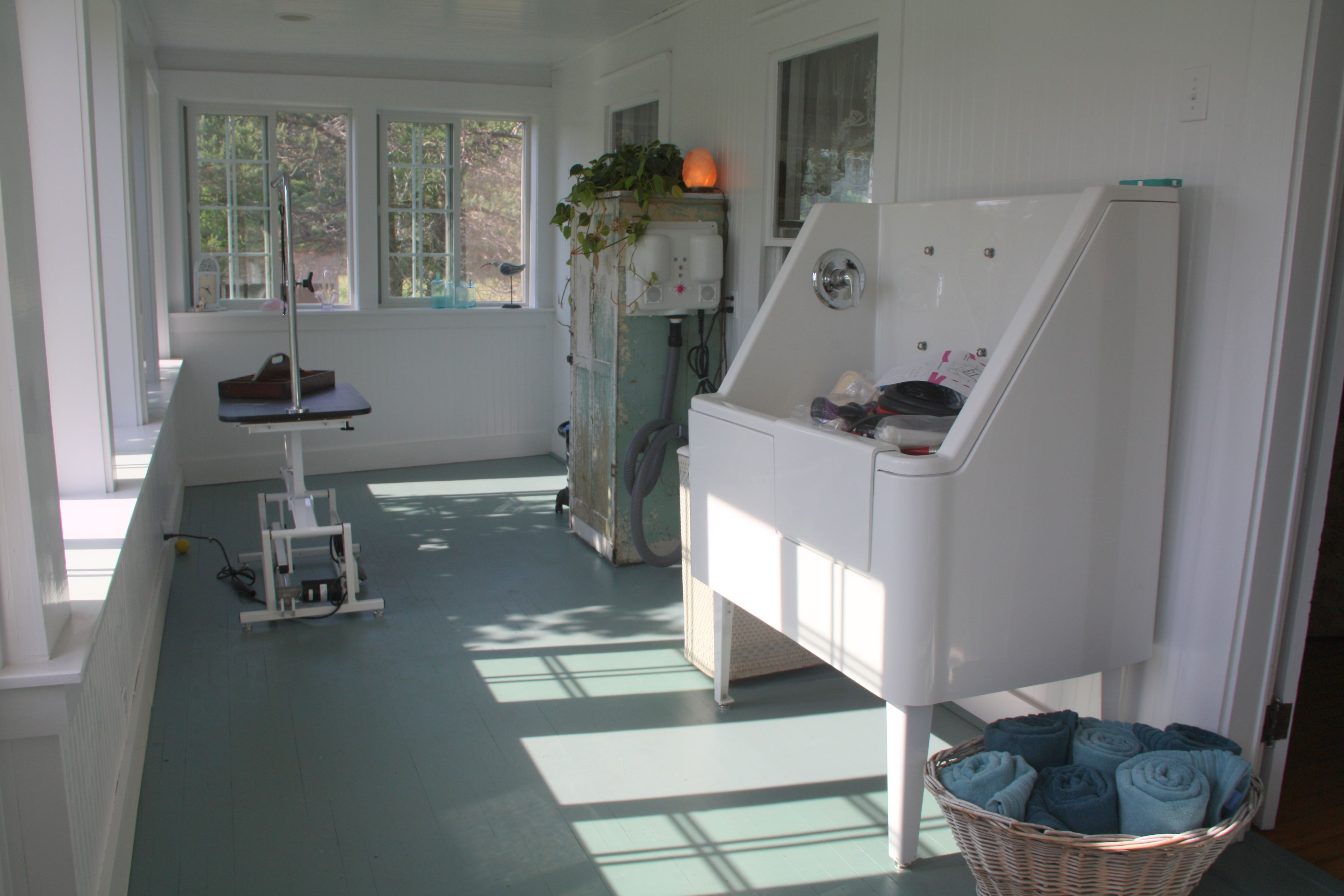The Other Side Is Where The Magic Happens A Beautiful Bathtub Designed For The Comfort And Safety Of Pe Dog Grooming Salons Pet Grooming Salon Grooming Salon