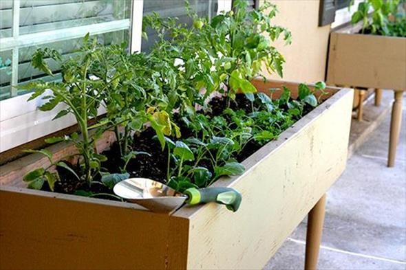 Creative Planters: DIY Vegetable Planter
