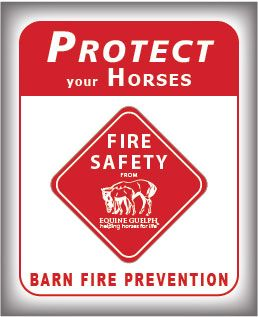 Fire Prevention and Safety icon