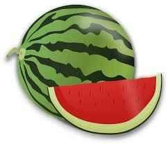 watermelon my favourite fruit essay short paragraph essay watermelon my favourite fruit essay short paragraph