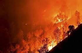 वसफटक बनन वल फकटर म भषण आग 10 लग क मरन क आशक