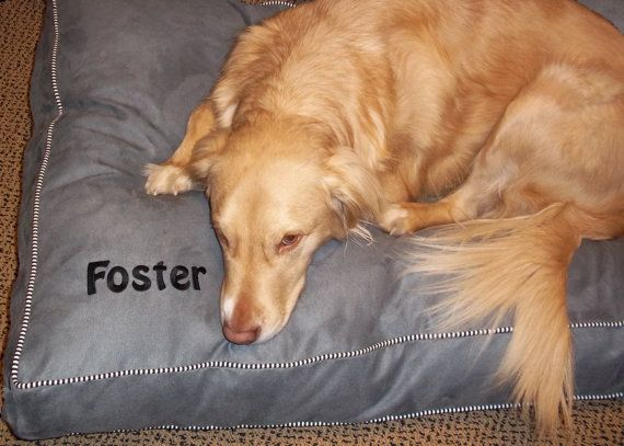 Pawzzz Pillow Bed Large by jakeybb on Etsy, $155.00