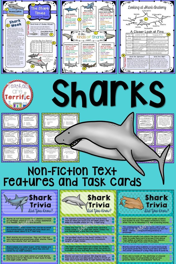 Workbooks text features reading comprehension worksheets : Sharks Non-Fiction Text Features and Task Cards | Comprehension ...