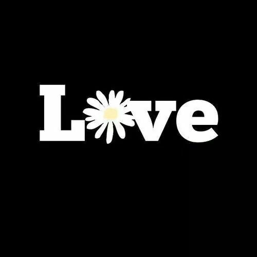 Love Is All You Need Daisy Love