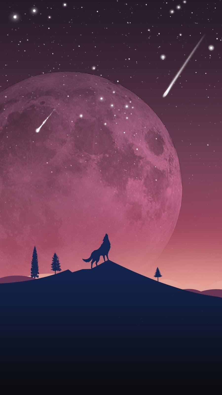 Wolf Wallpaper Galaxy S7 Edge | Free Wallpaper Phone