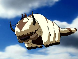 Fluffy flying appa Avatar funny, The last airbender
