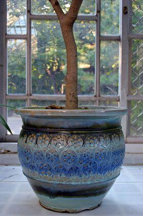 Como plantar em vasos sem furos