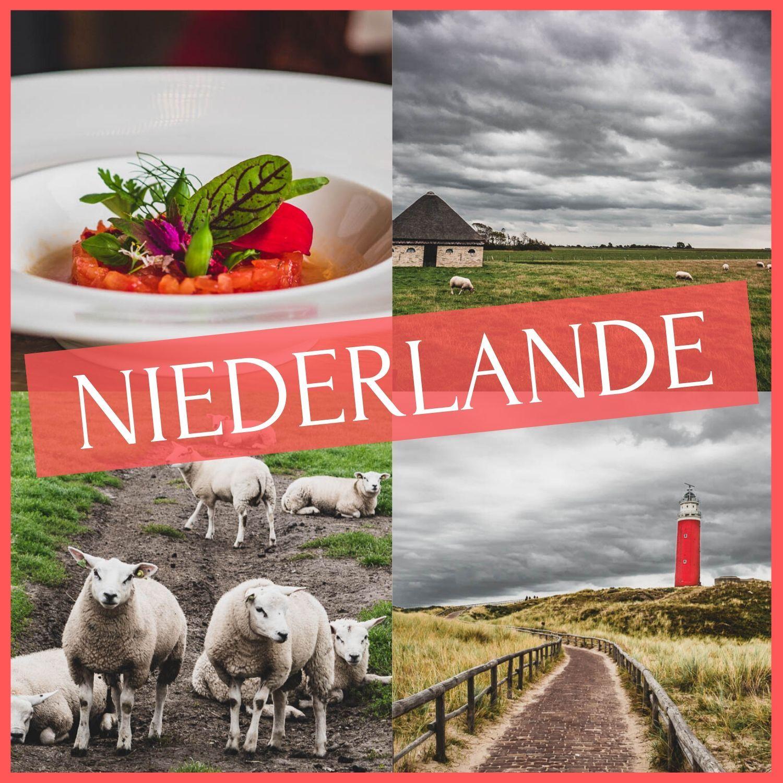 In Deine Niederlande