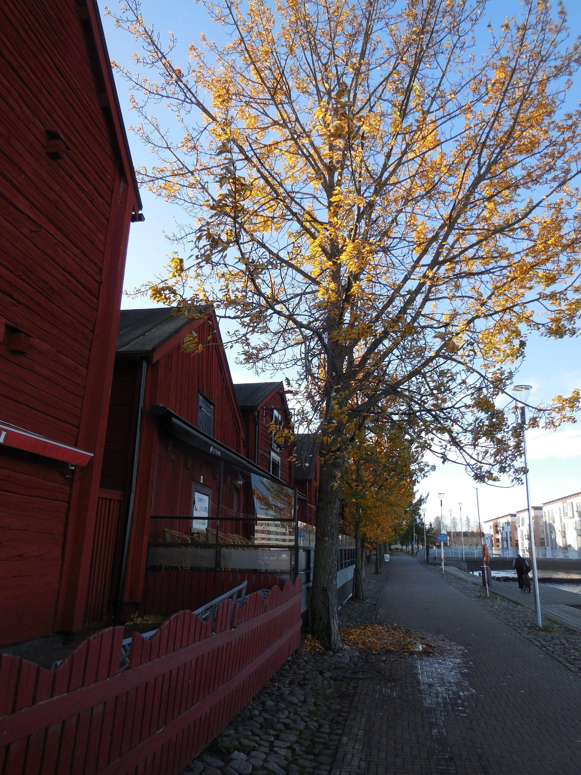 Koulujen Lomat Oulu
