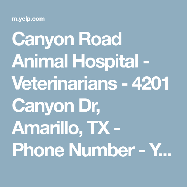 Canyon Road Animal Hospital Veterinarians 4201 Canyon Dr Amarillo Tx Phone Number Yelp Animal Hospital Canyon Road Hospital
