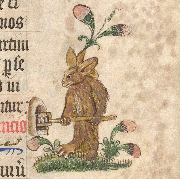 Why are you using a pizza oven, rabbit? | 44 Medieval Beasts That Cannot Even Handle It Right Now