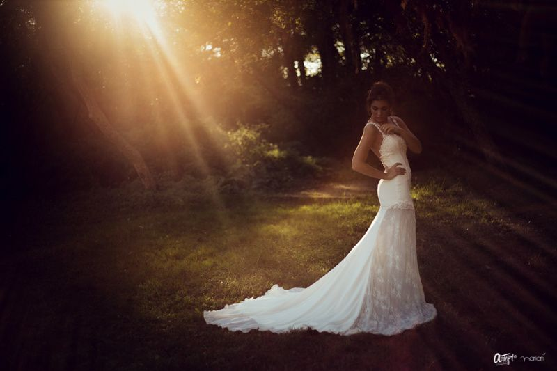 BODA.WEDDING