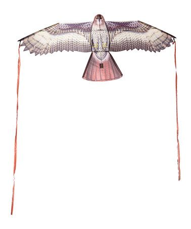Look what I found on #zulily! Hawk Kite #zulilyfinds