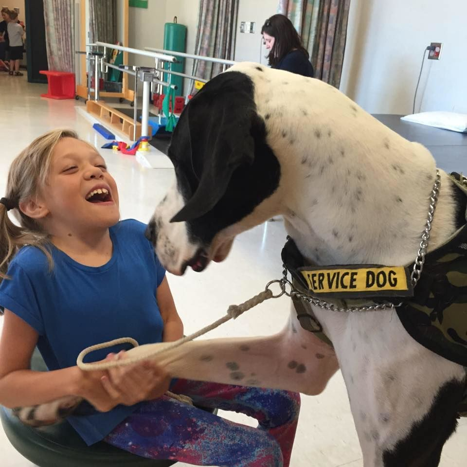 Meet The Very Great Dane Giving This Little Girl With A Rare