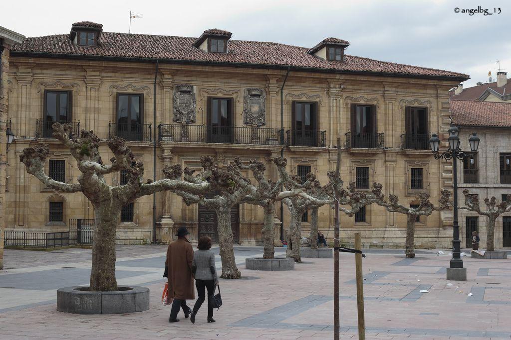 O Palacio del Duque del Parque. Original del s.XVIII según diseño de Francisco de la Riva Ladrón de Guevara. En algún tiempo fue fábrica de armas, colegio y Ayuntamiento. Desde 1892 pertenece a los marqueses de San Feliz, que´aún lo habitan. Está situado en la plazuela de Daoíz y Velarde, en el Fontán, en Oviedo.