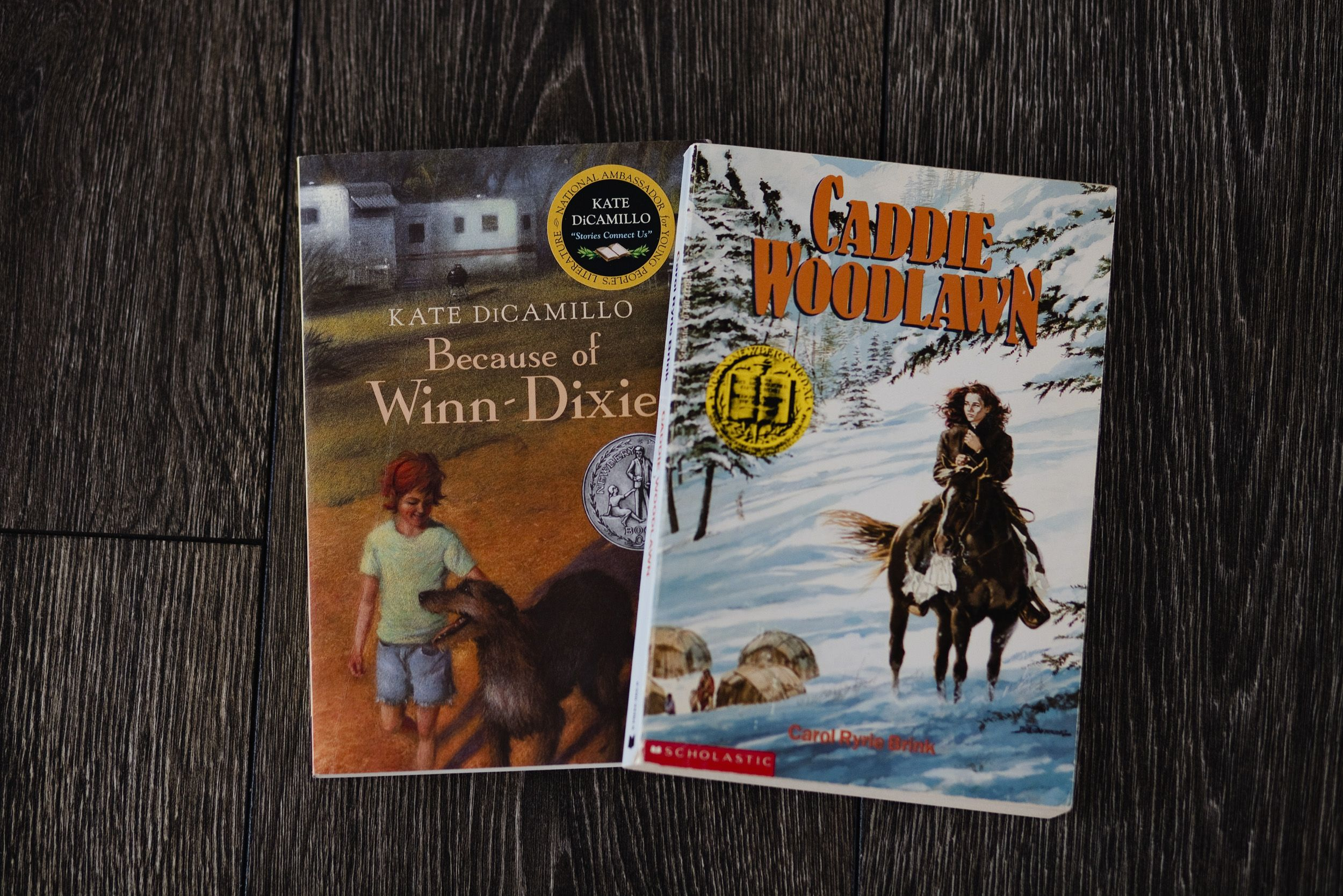 Classic novels for grades 3 4 intentional