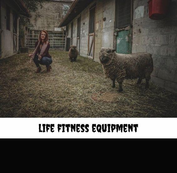 life fitness equipment 242 20180712042412 22 confidence fitness v2