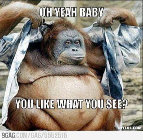 Lmaolmaolmao Monkeys Funny Gym Memes Funny Humor