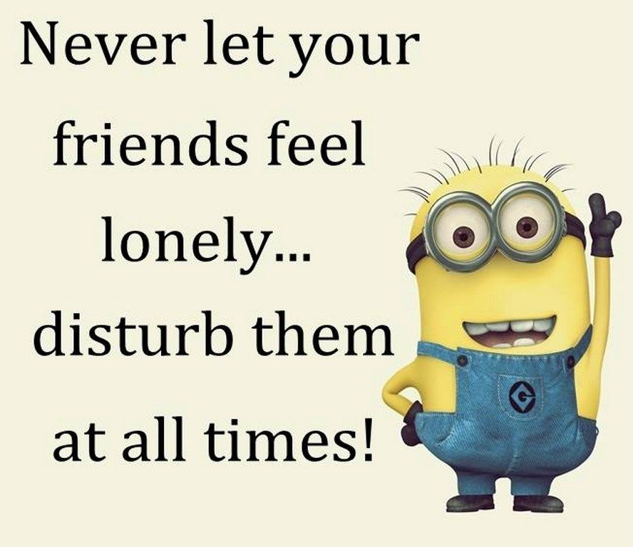 Cute Funny Minion Quotes Gallery 125801 AM Tuesday 01 September 2015 PDT 10 Pics