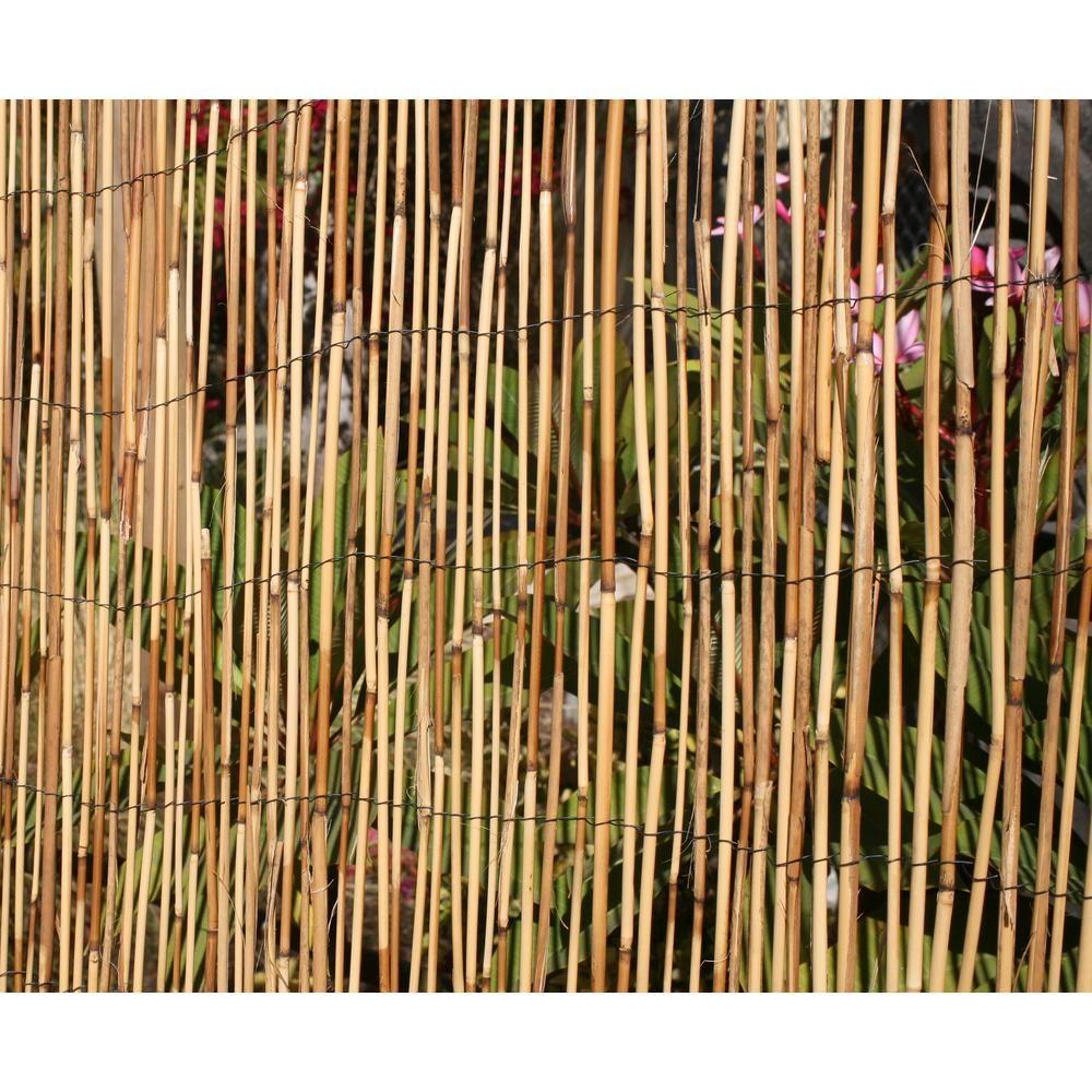 Backyard X-Scapes 6 ft. H x 16 ft. L Bamboo Coffee Peeled ...