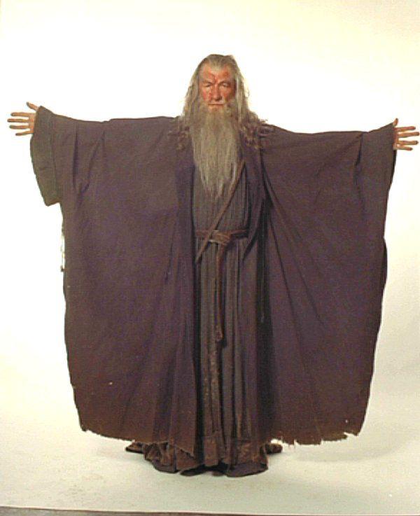Gandalf_dg3.jpg (600×737) | Gandalf costume references ...