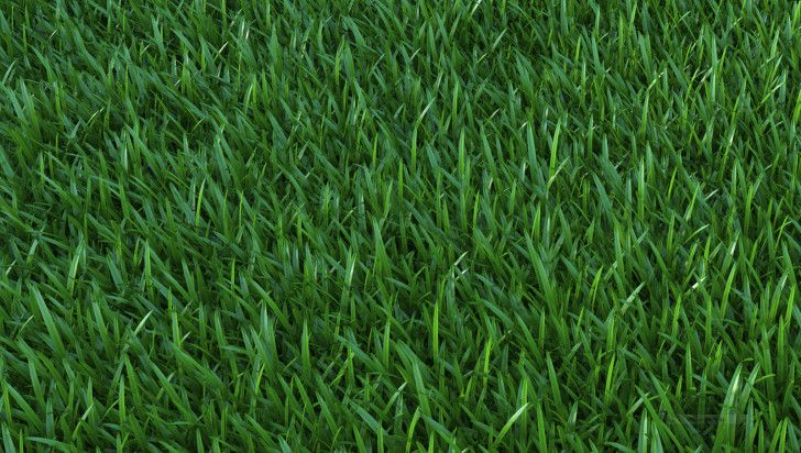Sketchup V Ray Proxy Grass 3d Architectural Visualization