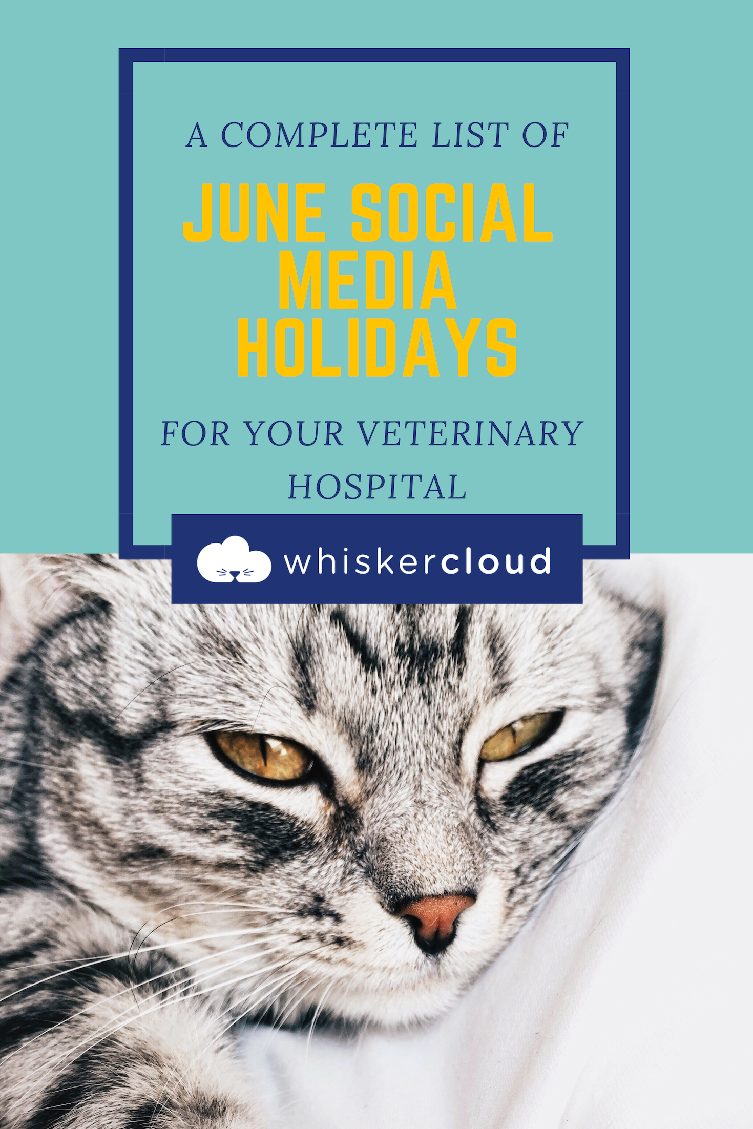 Complete List Of Social Media Holidays For Veterinary Hospitals Veterinary Hospital Veterinary Veterinary Clinic