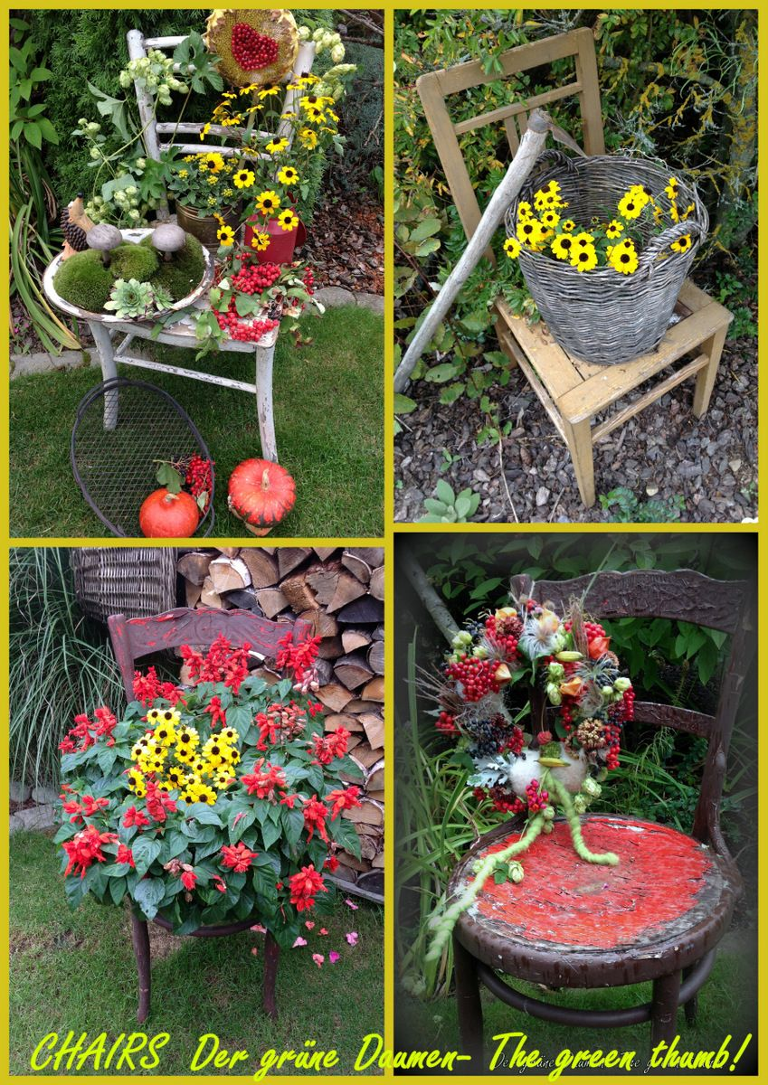 I love to decorate chairs! | Container Gardening | Pinterest ...