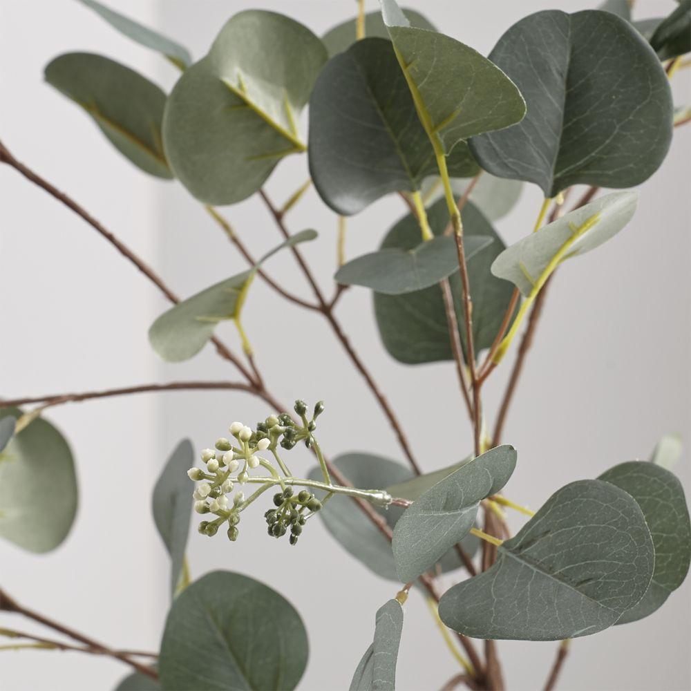 Artificial Silver Dollar Eucalyptus Stem + Reviews | Crate and Barrel