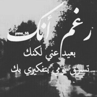 شعر شعبي عراقي Beautiful Quotes Arabic Quotes Love Words