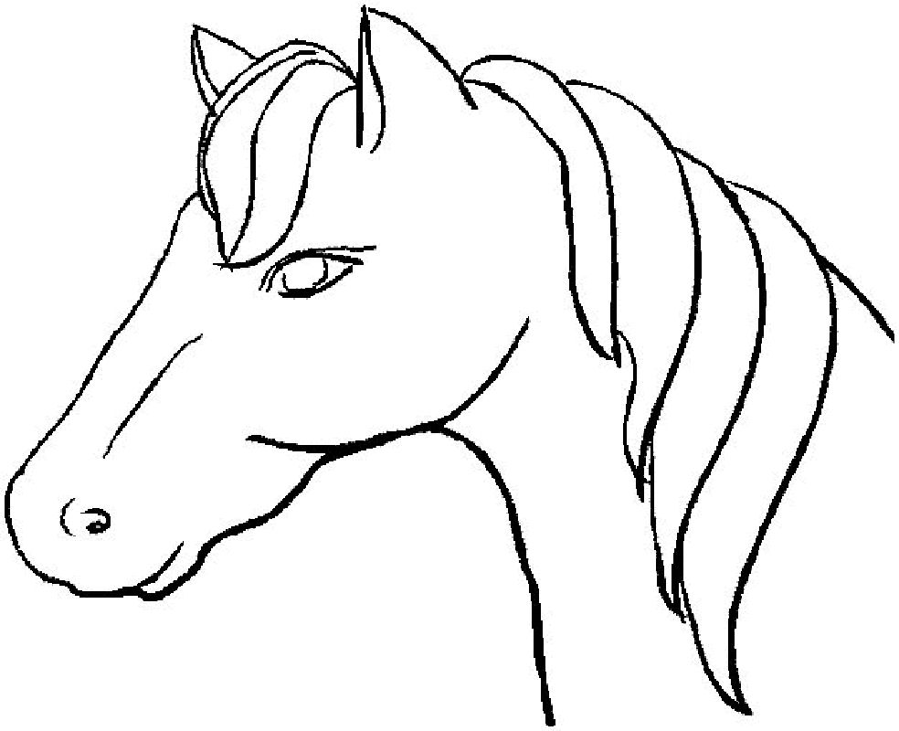 horse head coloring page # 3