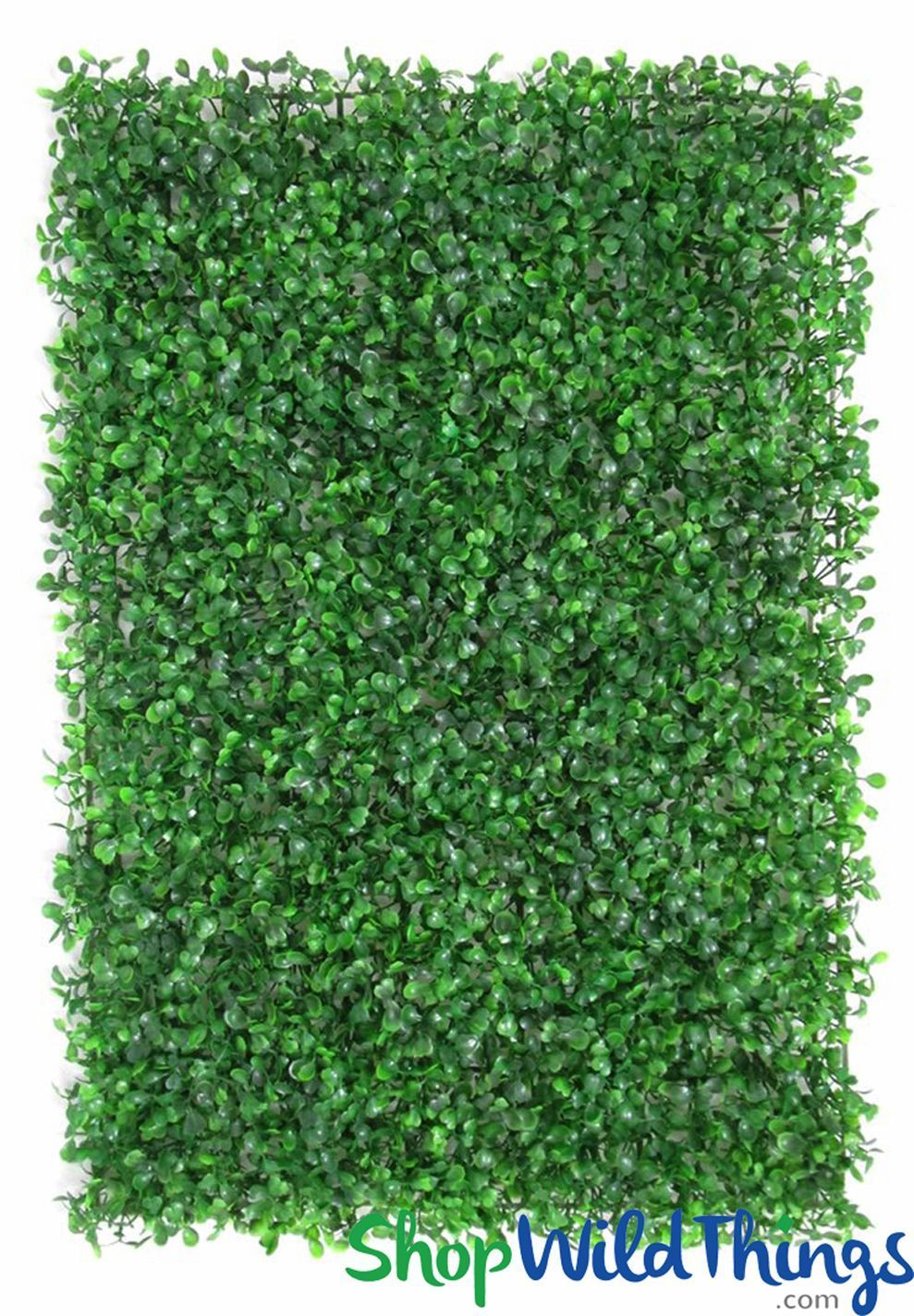 common boxwood wall mat greenery wall 23 1 2 x 16 on interior using artificial boxwood panels with flowers id=88348