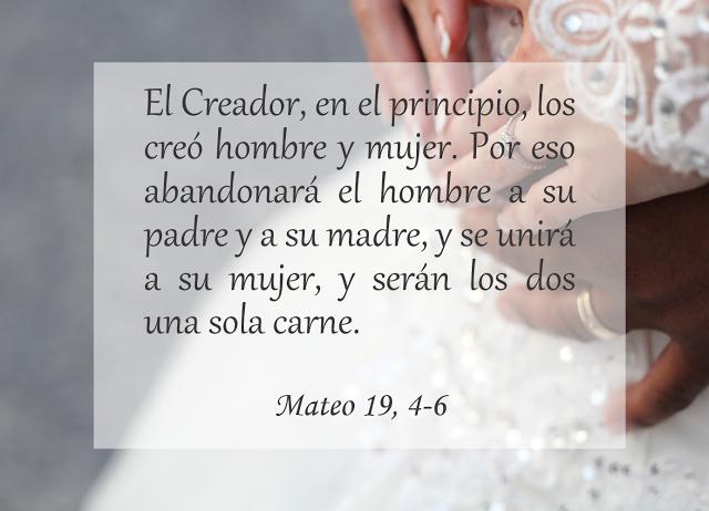 Lecturas Para Matrimonio Catolico : Biblia jesús evangelio matrimonio divorcio