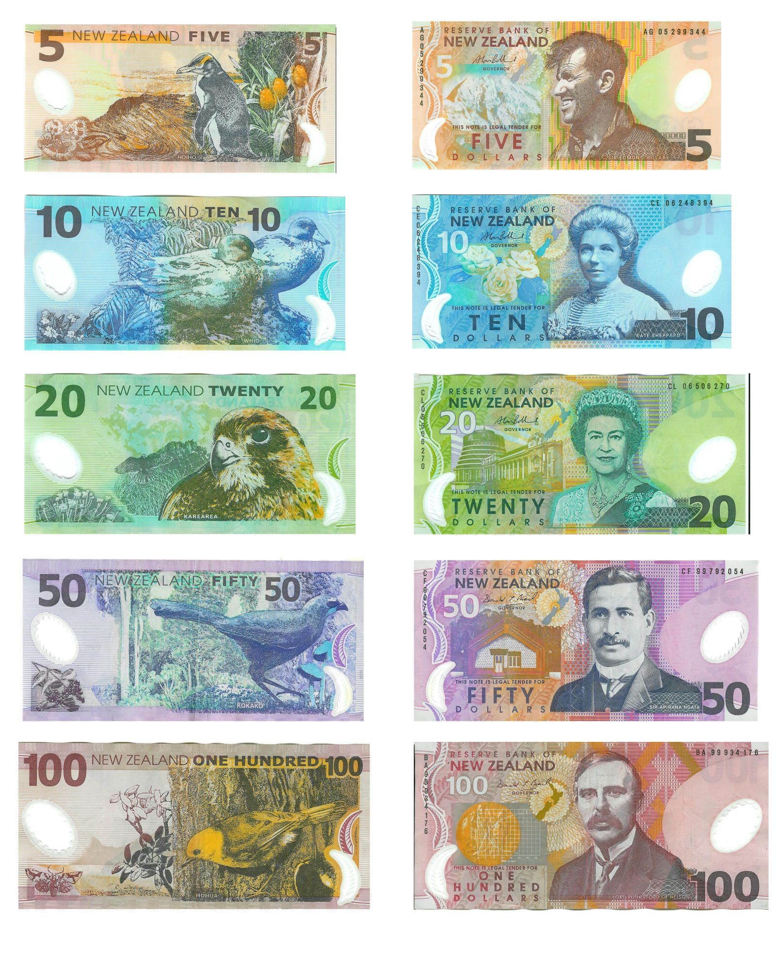 Nz Currency Top To Bottom Sir Edmund Hillary First Man Climb Mt Everest 1953 Kate Sheppard Women S Rights Activist 1893 Queen Elizabeth Ii