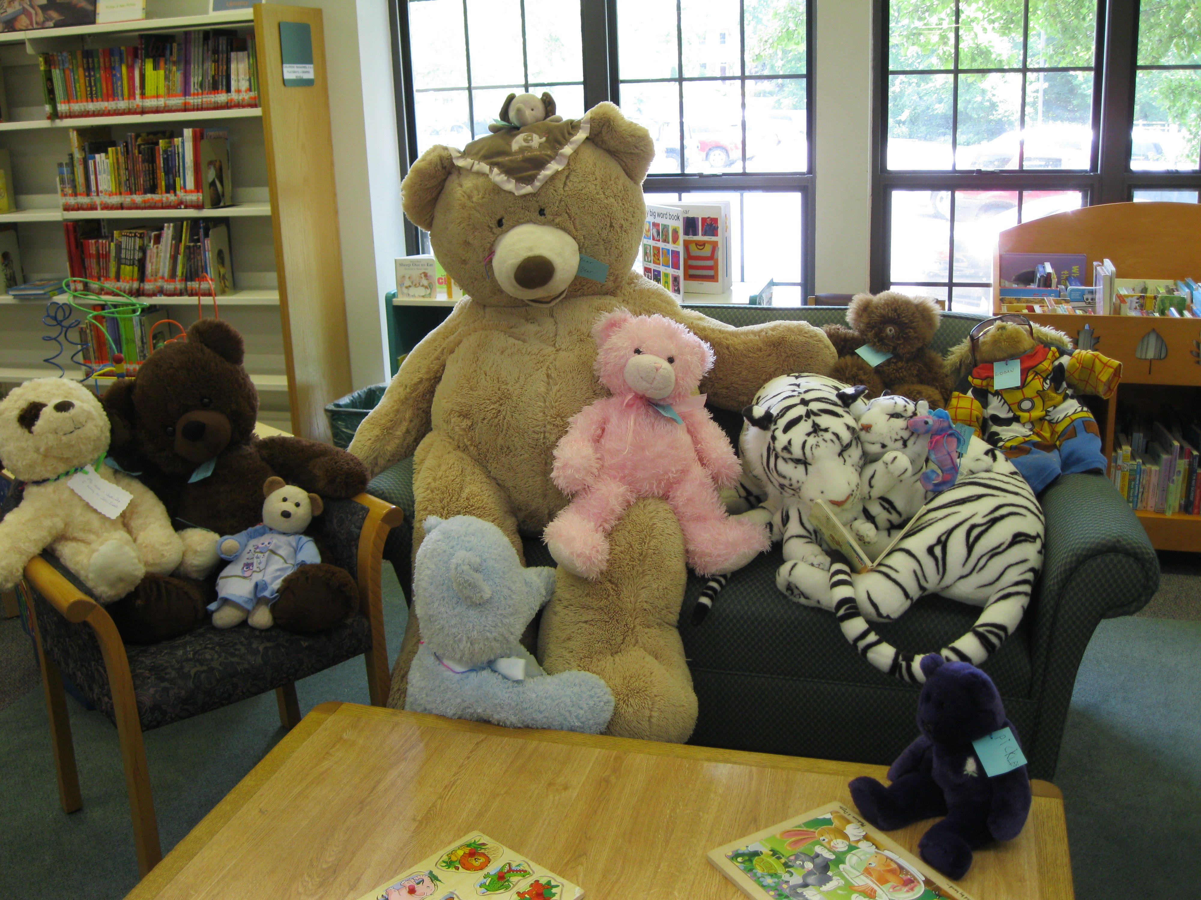 Teddy bears from some of our younger patrons had a sleepover in the Purcellville library.
