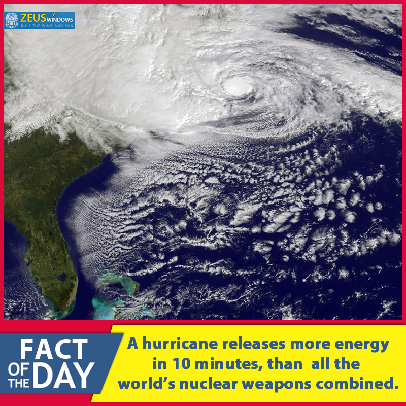 Pin On Amazing Tips And Facts About Hurricane