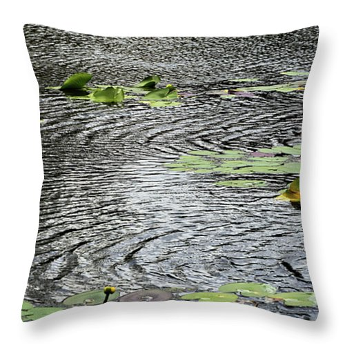 Wind Water Ripples Throw Pillow by William Tasker.  Our throw pillows are made from 100% spun polyester poplin fabric and add a stylish statement to any room.  Pillows are available in sizes from 14 x 14 up to 26 x 26.  Each pillow is printed on both sides (same image) and includes a concealed zipper and removable insert (if selected) for easy cleaning. #waterripples Wind Water Ripples Throw Pillow by William Tasker.  Our throw pillows are made from 100% spun polyester poplin fabric and add #waterripples
