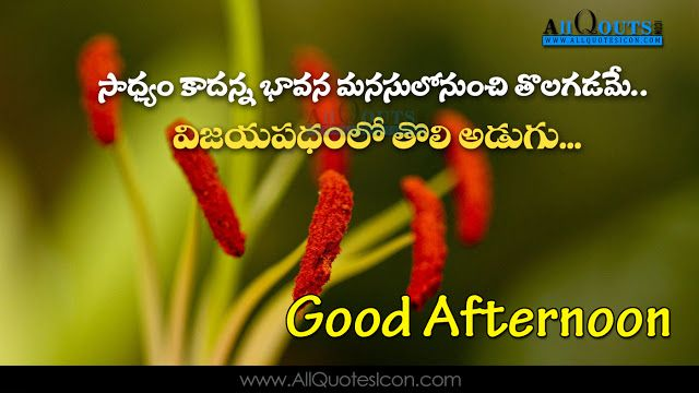 Good Afternoon Wallpapers Telugu Quotes Wishes For Whatsapp