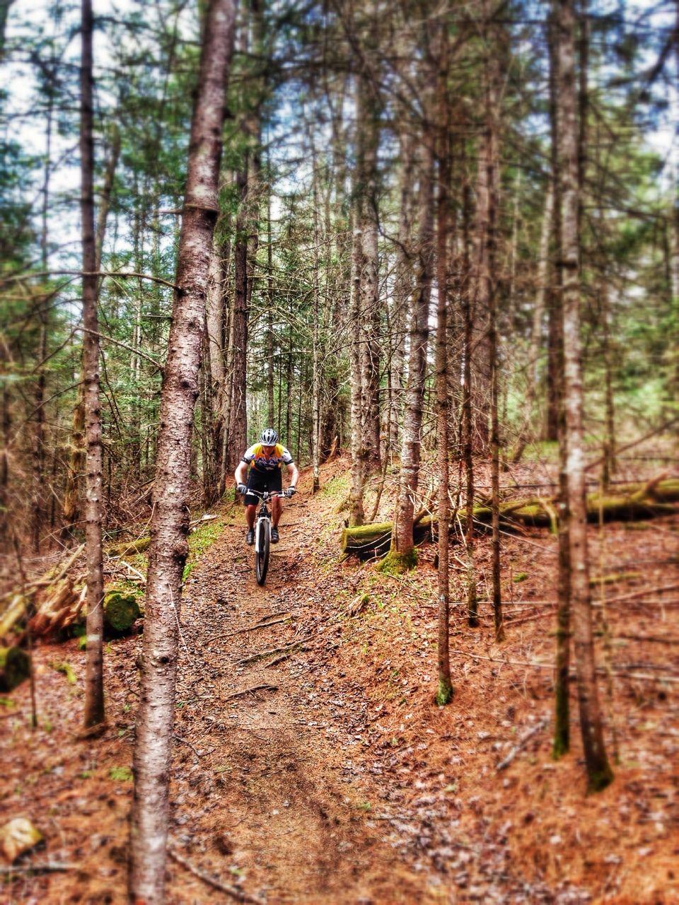 Mountain Bike Trails Vt