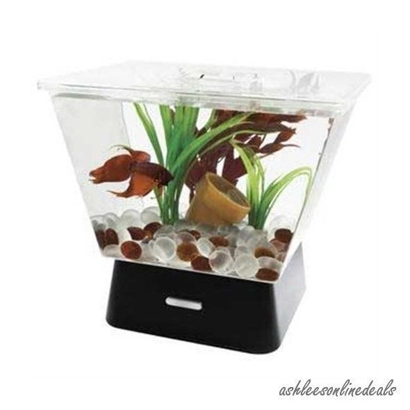 Small fish tank 1 gallon w led lights goldfish betta room for Cool small fish tanks
