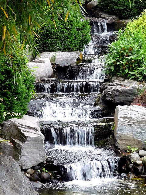 Man Made Waterfall At Clear Creek Nursery Silverdale Wa