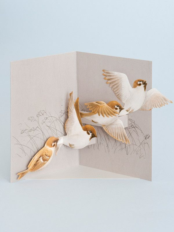 Photo of Rifle Paper Company   Shop Rifle Paper Co cards