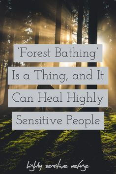 'Forest Bathing' Is a Thing, and It Can Heal Highly Sensitive People