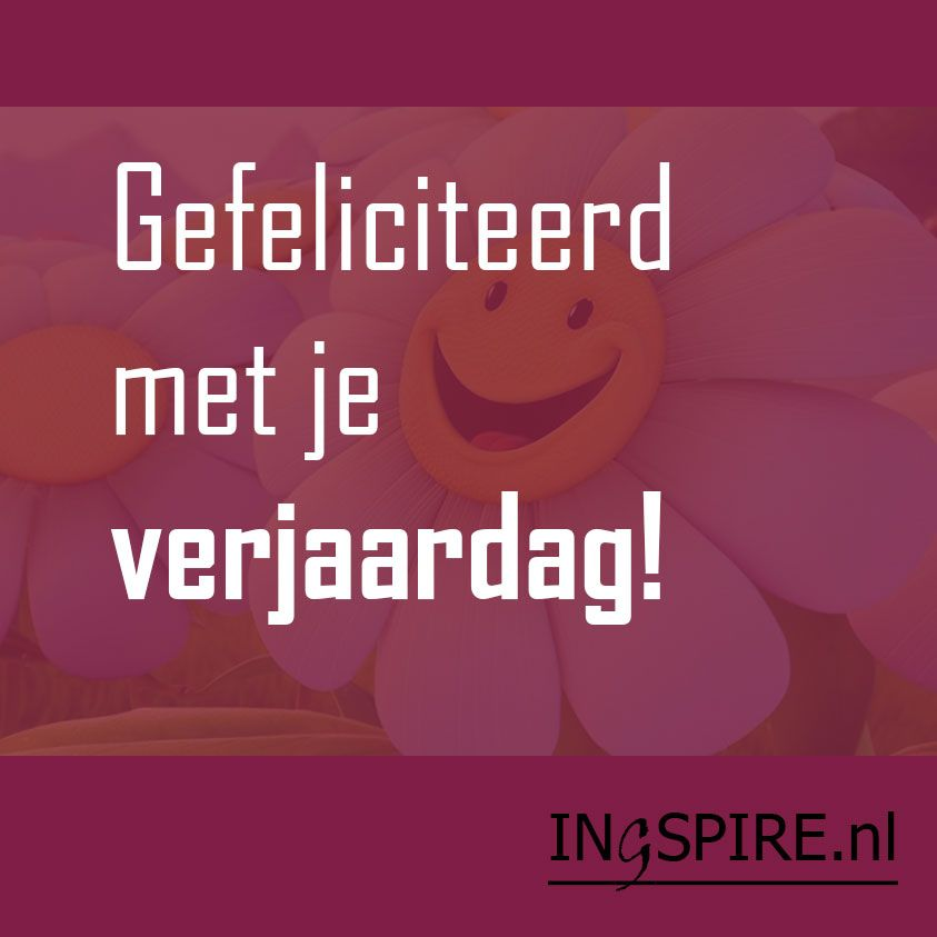Good Morning Everyone In Dutch : Spreuk gefeliciteerd met je verjaardag ingspire
